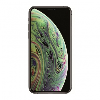 apple-iphone-xs-max-512gb-seryy-cosmos-2